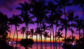 Brilliant Tropical Sunset Royalty Free Stock Photos