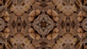 Brown kaleidoskope background stock video