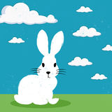 Bunny on green grass Royalty Free Stock Image