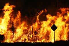 Bush fire Royalty Free Stock Photography