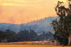 Bush fire Tasmania Stock Image