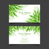 Business card with green leaves. Vector template Stock Images