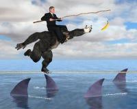 Business Risk Management, Sales, Marketing Stock Image