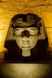 Bust of Rameses II Stock Image