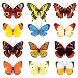 Butterfly set Stock Images