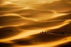 Caravana del camello Fotos de archivo libres de regalías