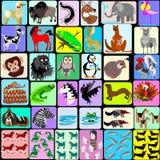 Cartoon animals of the alphabet Stock Image
