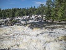 Cascada Kivakkakoski en el parque nacional de Paanajärvi Foto de archivo
