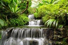 Cascata nella foresta pluviale Fotografia Stock