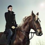 Cavaliere elegante Fotografia Stock