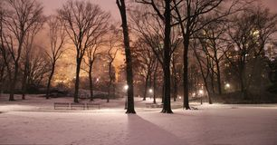Central Park-Peaceful Solitude, Unimpaired Freedom Royalty Free Stock Photo