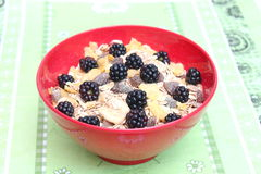 Cereals Stock Photography