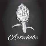 Chalk drawn sketch artichoke flower vector Black and white kitchen art, Kitchen decor Royalty Free Stock Photography