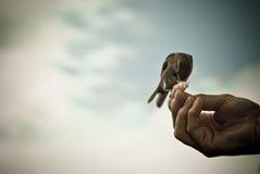 Charitable Hand Stock Photo
