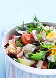Chef's Salad Royalty Free Stock Photography
