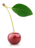 Cherry berry with leaf isolated on white Royalty Free Stock Photography