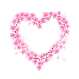 Cherry Blossom Heart Stock Photos