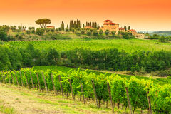 Chianti vineyard landscape with stone house in Tuscany Royalty Free Stock Images