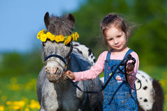 Child and small horse in field Royalty Free Stock Image