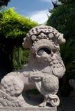 Chinese Stone Lion Royalty Free Stock Image