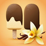 Chocolate ice cream with vanilla flavour Royalty Free Stock Image