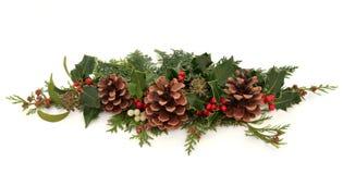 Christmas Decorative Spray Royalty Free Stock Photography