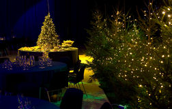 Christmas Party Arrangement Royalty Free Stock Photo