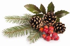 Christmas seasonal border of holly, mistletoe, Royalty Free Stock Photography