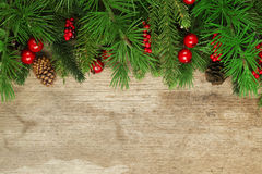 Christmas tree branches background Stock Images