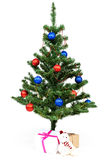Christmas tree decorated red and blue balls. Royalty Free Stock Photo