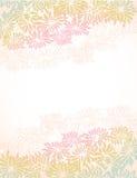 Chrysanthemum borders Royalty Free Stock Photos