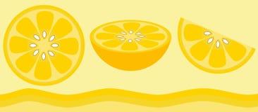 Citrus - Lemon Royalty Free Stock Photography