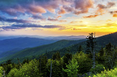 Clingmans Dome, Great Smoky Mountains, tennessee Stock Photos