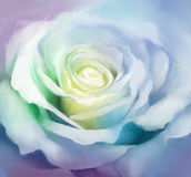 Close up of white rose petals. Oil painting flower Royalty Free Stock Photography