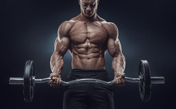 Closeup portrait of a muscular man workout with barbell at gym Stock Photography