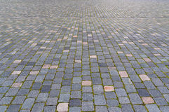 Cobbled pavement Stock Images