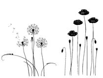 Collection for designers, wild plant vector Stock Images