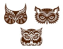 Collection of wise old owl faces Royalty Free Stock Images