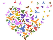 Color birds flying with heart Stock Photos