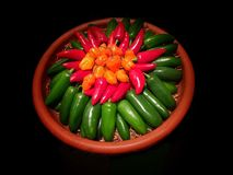 Colorful Chile Peppers Variety Royalty Free Stock Image