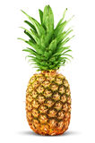 Colorful pineapple Royalty Free Stock Photos