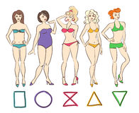 Colorful set of  female body shape types. Stock Images