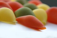 Colorful shells Royalty Free Stock Photo