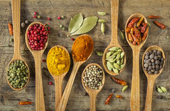 Colorful spices Stock Photography