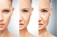 Concept of aging and skin care Royalty Free Stock Photography