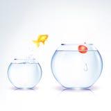 Conceptual Fish Temptation Stock Images