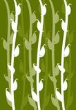 Corn leaf patten Stock Images