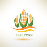 Corn vector symbol Royalty Free Stock Images