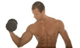 Costruttore di corpo atletico muscolare che risolve con il dumbbell Fotografie Stock