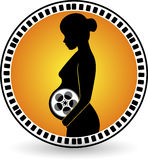 Creation pregnant movie Royalty Free Stock Images